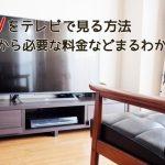 テレビの大画面で動画!
